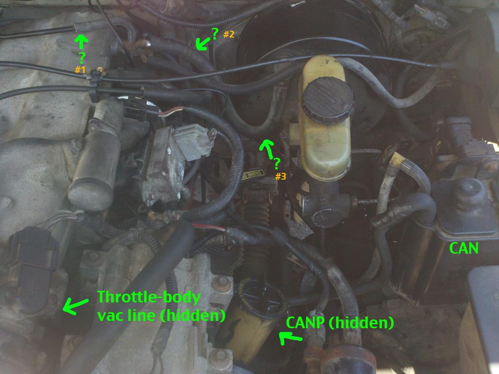 AutoMobile repair Etc: 94 Explorer Vacuum-Line madness (pics inside) - Ford  Explorer and Ranger Forums \